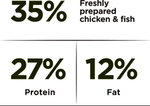 Adult Large – Chicken