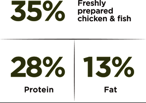 Adult Medium – Chicken